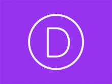 DIVI_theme_logo