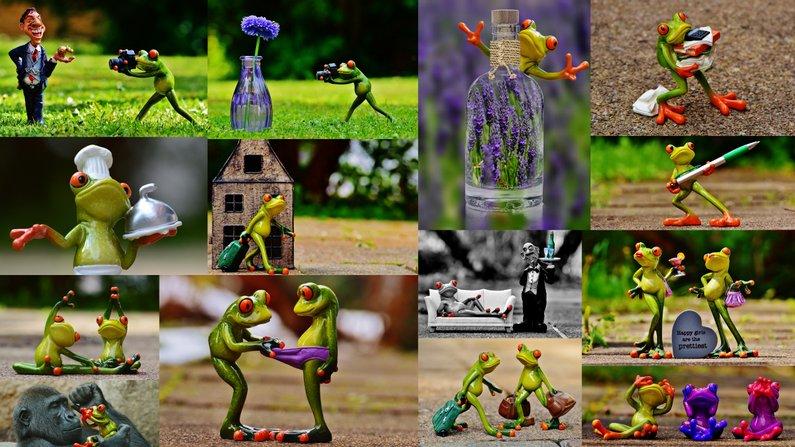 moodboard_frogs