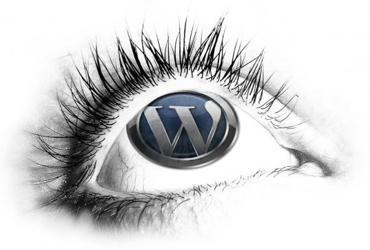 WordPress, webdesign og webkommunikation